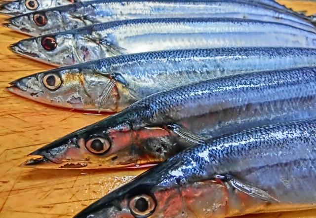 塩サンマより生秋刀魚